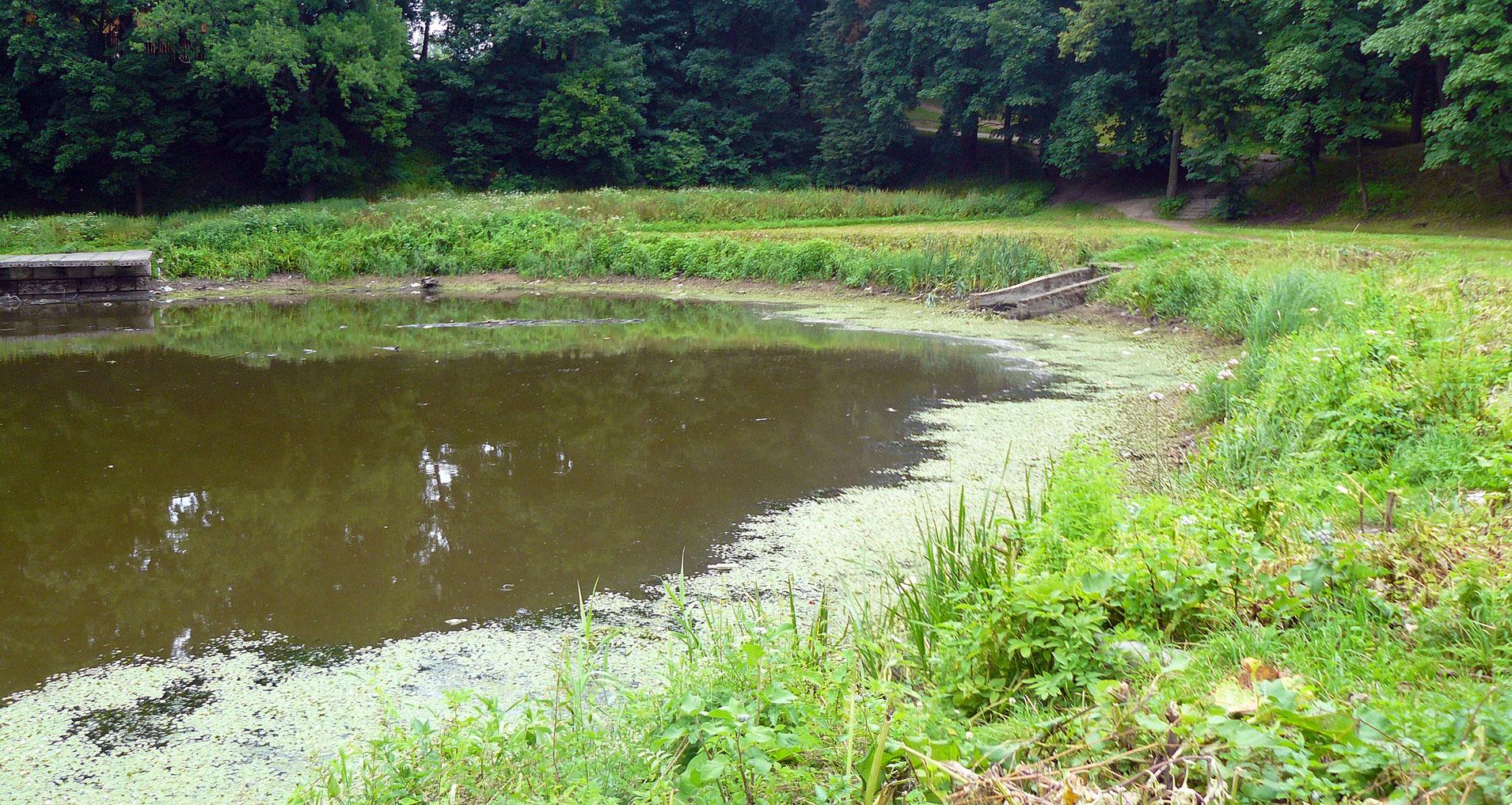Отчёт по практике МГУП инстерГОД Для приведения каскада прудов в надлежащий вид необходимо провести мероприятия по их очистке с предварительным спуском воды произвести планирование и